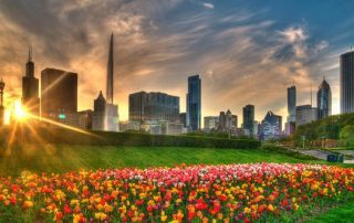 Things to Do on Spring Break in Chicago - View the Tulips